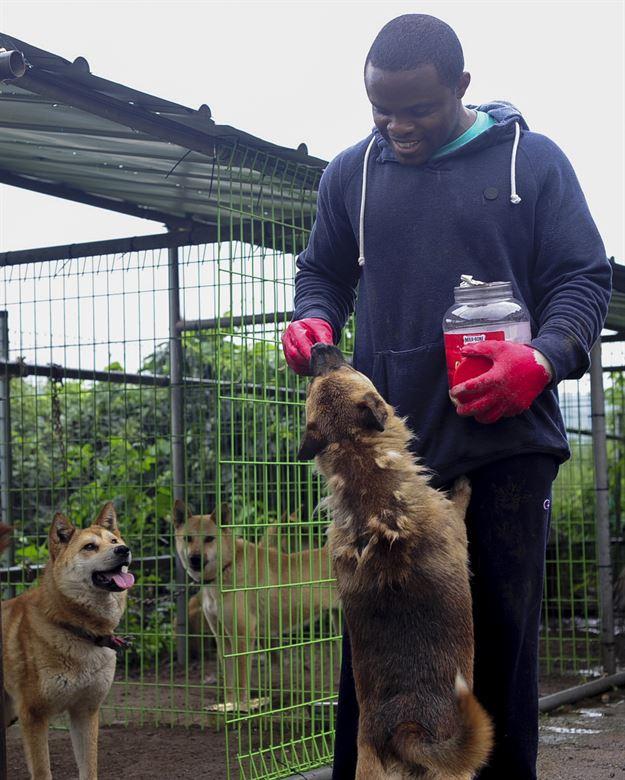 08_animal-shelter-volunteer.jpg