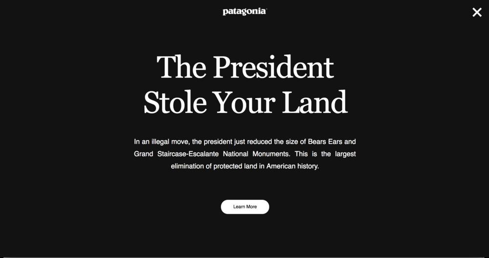 www.patagonia.com