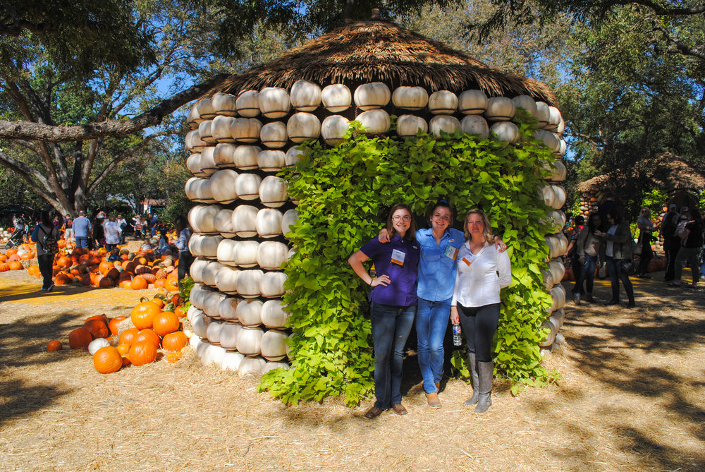 SFA students Anna Claire, Jade, and Laura stand in front of a pumpkin house at the  Dallas Arboretum 's Wonderful World of Oz.