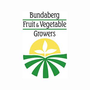 BFVG-logo01.jpg