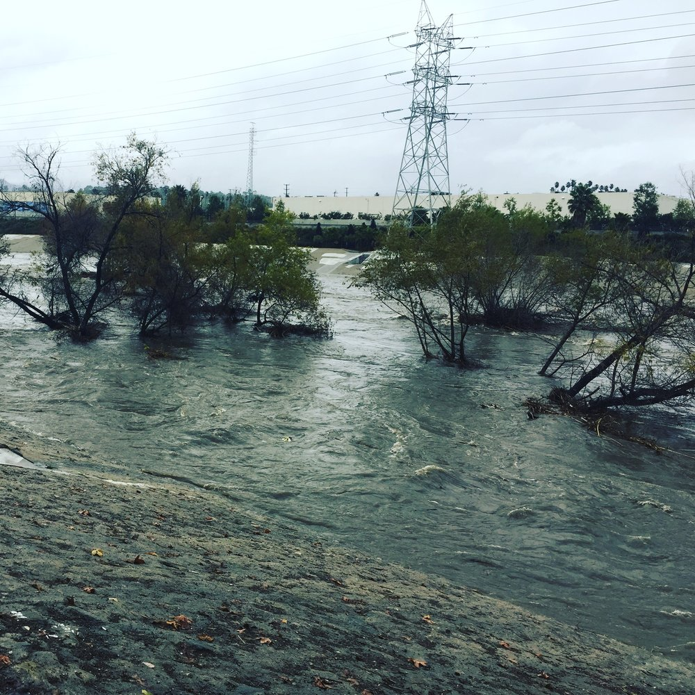 flooded river.JPG