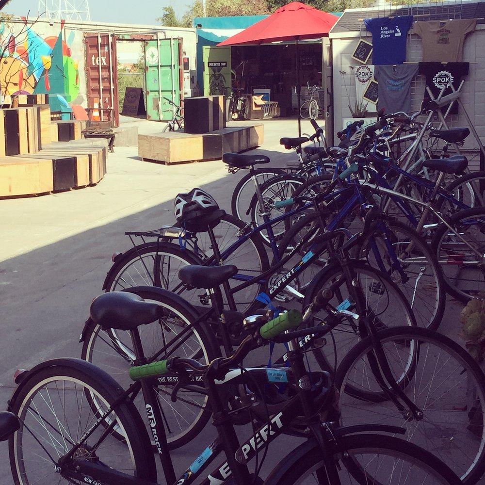 line of bikes.JPG