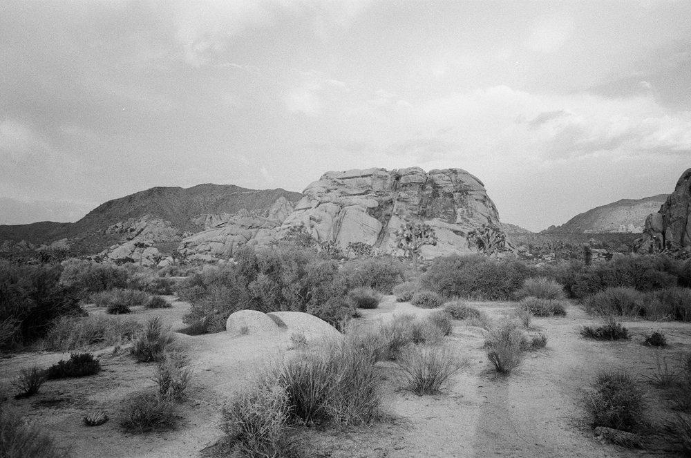 desertbw-22.jpg