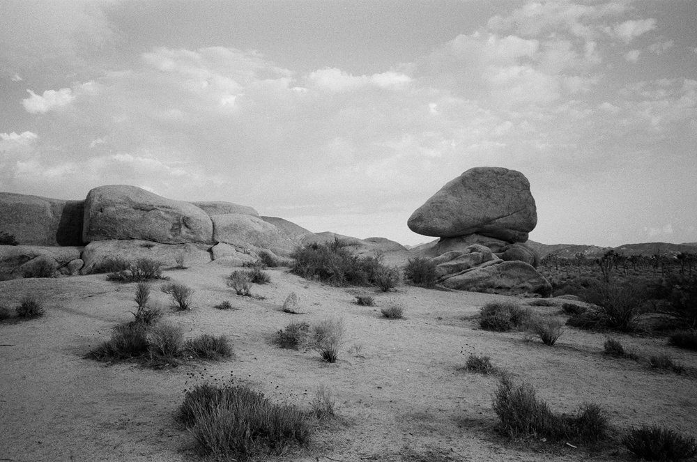 desertbw-26.jpg