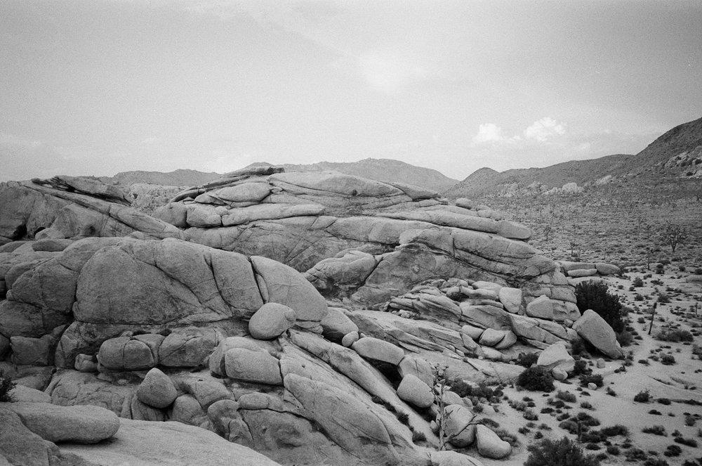desertbw-28.jpg