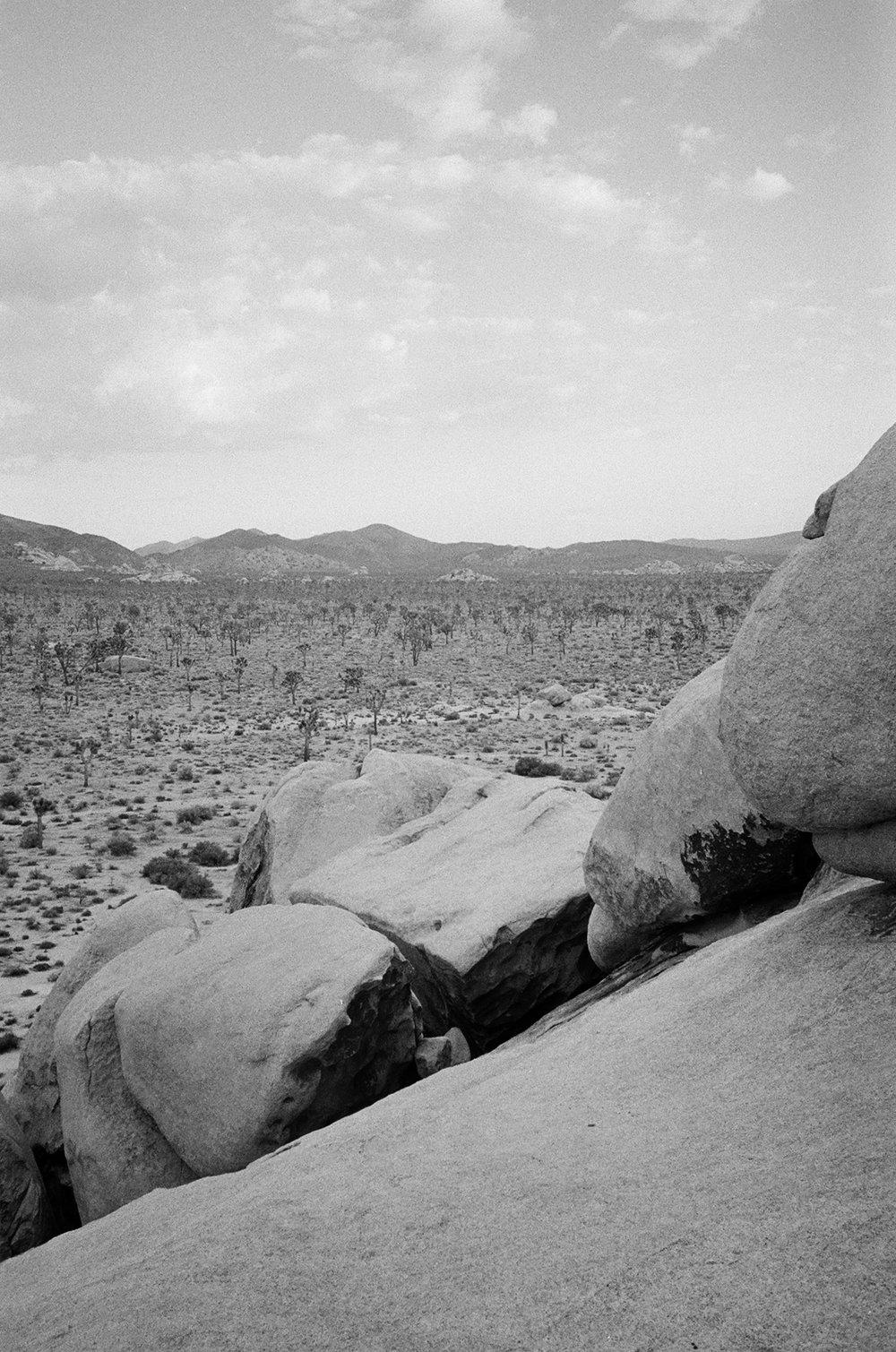 desertbw-29.jpg