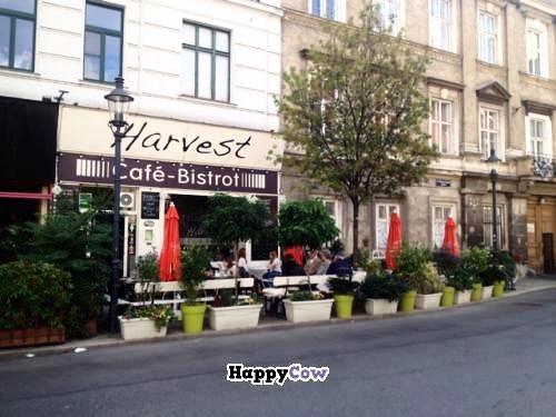 HarvestBistroCafe_exterior2.jpeg