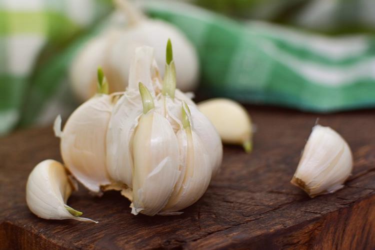 Flu-Fighter Garlic Soup - by Veg Corner