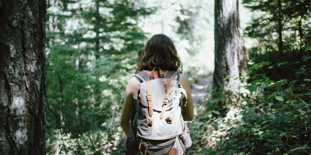 4. New Hiking Trail -