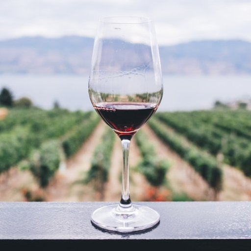 OUR GUIDE TO WINE TASTING - A Guide to Getting the Most out of Wine Tasting…