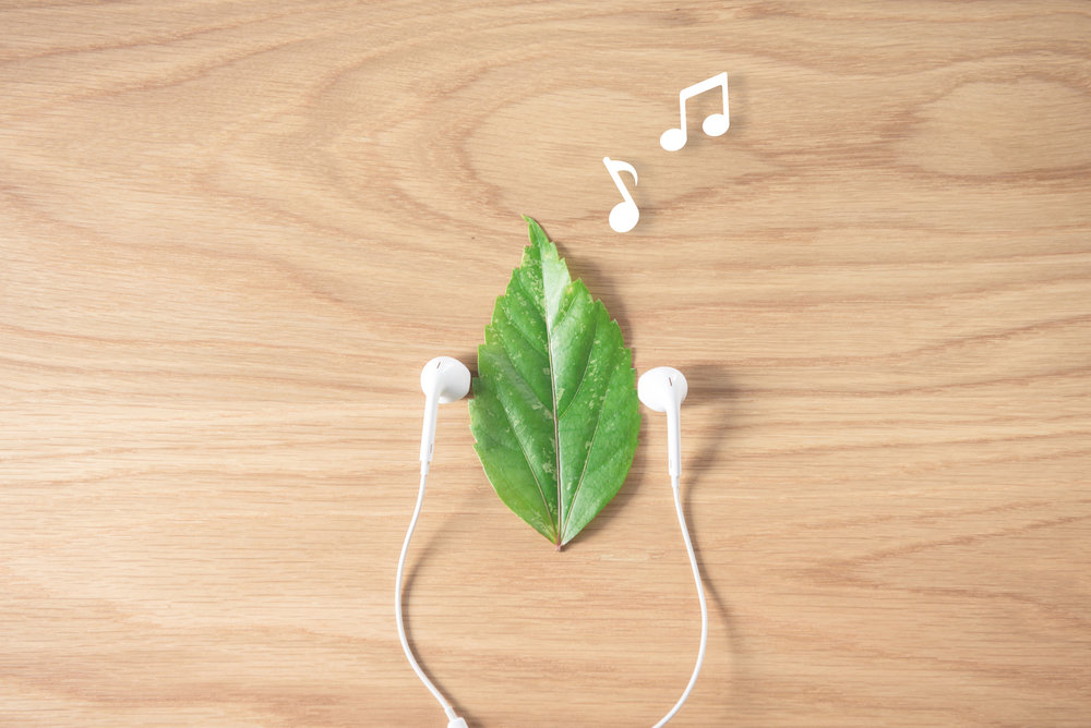 MUST-LISTEN-TO SPRING PLAYLIST - From Classical to Celtic to Everything In-Between…