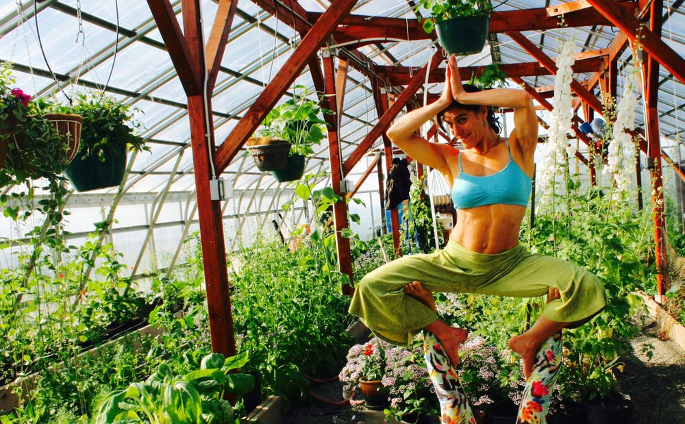Yoga retreat talkeetna open space anchorage alaska workshop