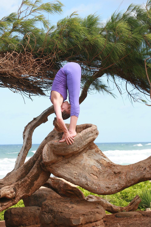 bhavani maki, open space, anchorage yoga, yoga alaska, hawaii yoga teacher, october