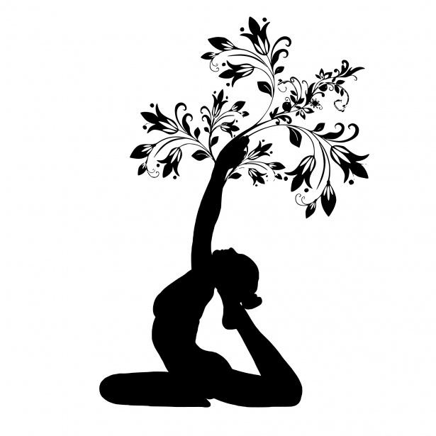yoga tree, yoga basics, yoga pose, fitness, anchorage alaska, anchorage yoga