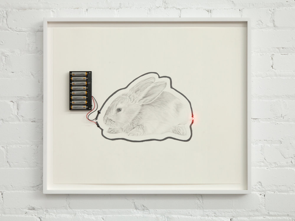 "Science Made Simple: Graphite Circuit of The Bunny You Shot With a BB Gun As a Child then Cried Over the Indignity of Your Wanton Destruction   22.5""x26.5""  graphite on paper with battery pack, eclectically conducive adhesive and led light  2017"