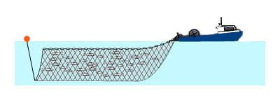 Gillnet_illustration.jpg