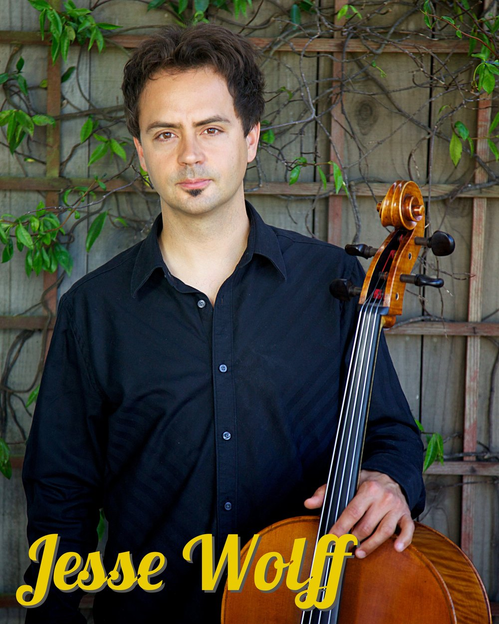 Jesse Wolff cello.jpg