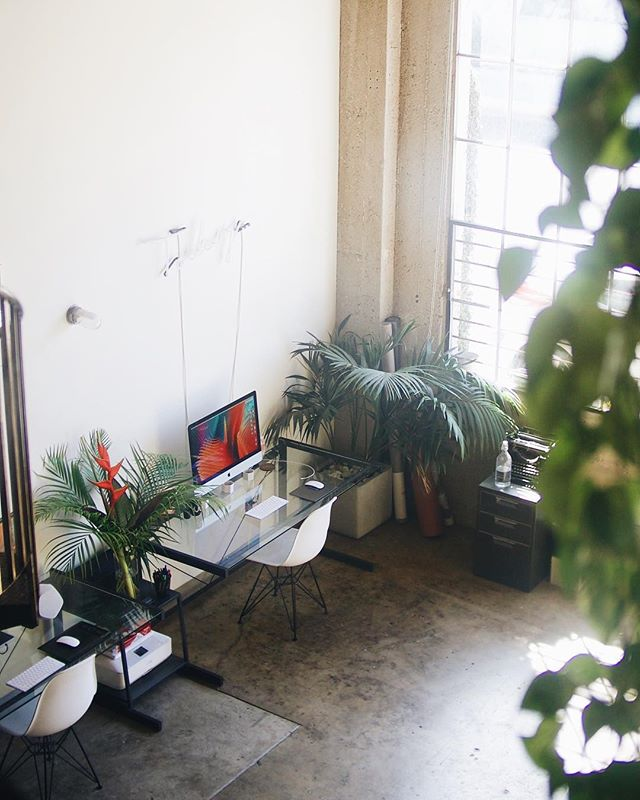 If you're in the local Los Angeles area or are planning a trip to the golden state, we'd love to have you in our studio for some coffee, jams, and creative conversation! DM us so we can schedule a time 🌴📚🎶