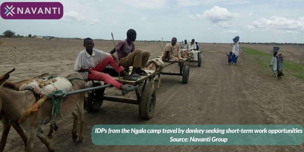 IDPs from the Ngala Camp Travel by Donkey Seeking Short-term Work Opportunities