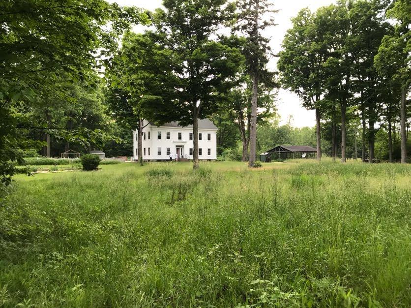 meadow house pic.jpg