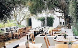 Plant-Food-Wine-Los-Angeles-11-900x560-c.jpg