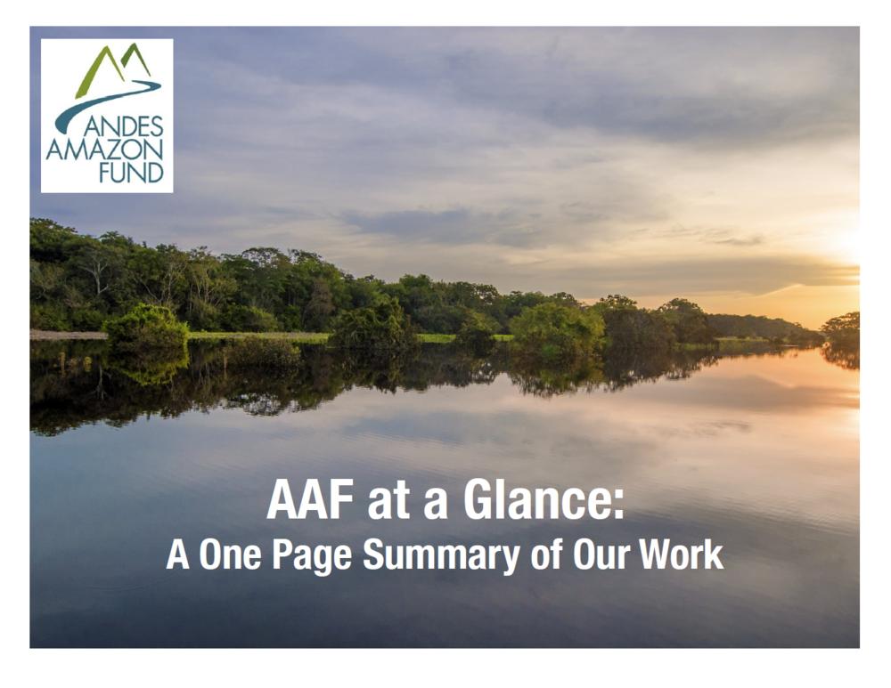AAF at a Glance - 2018