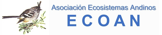 ecoan.png