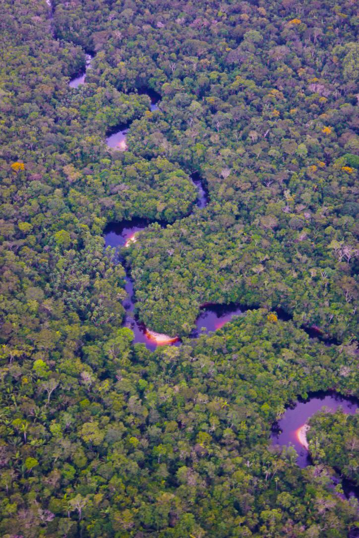 Enrique landscape 11.jpg
