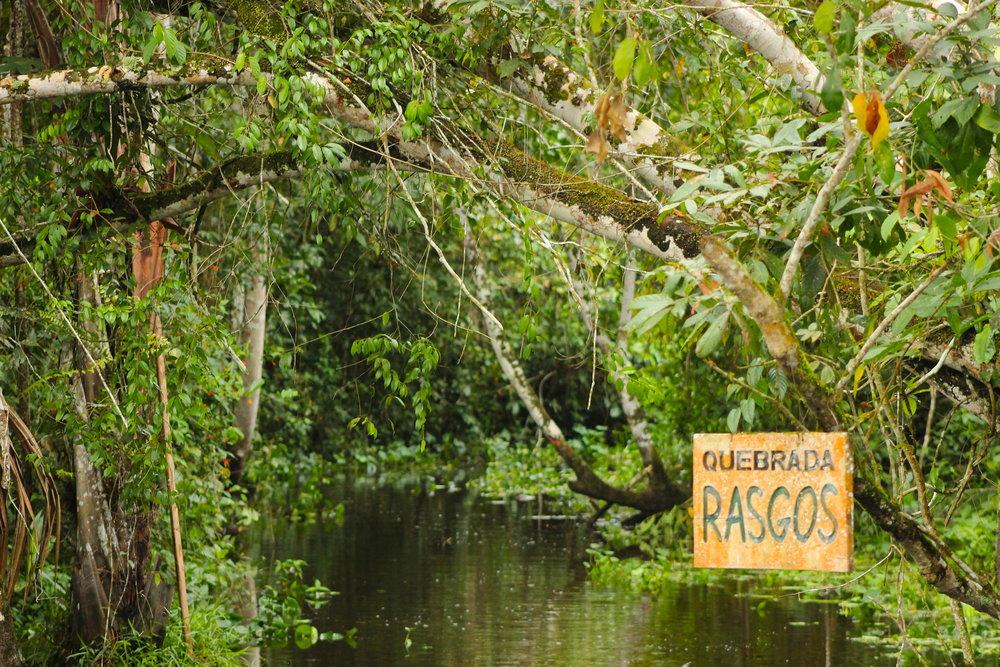 Challachaqui-Renacal de Santa Elena Conservation Concession