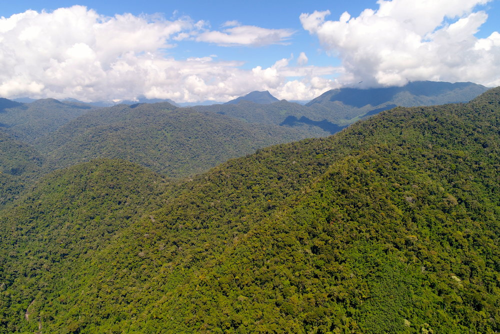 Gran Ochanache Conservation Concession