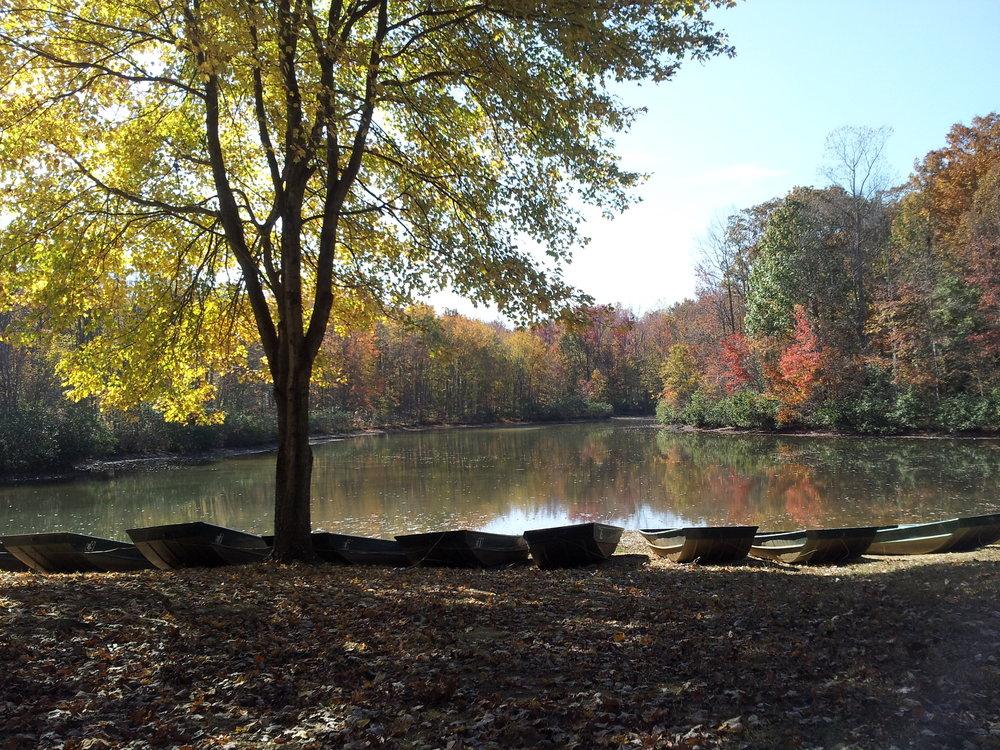 fall photo2013.jpg