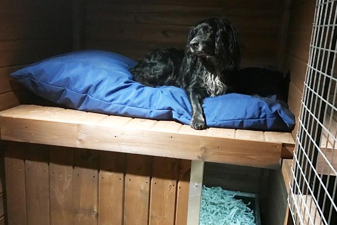 Timberbuild-dogbed2.jpg