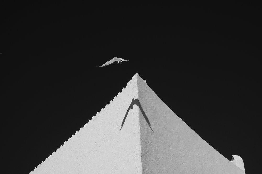 Dalí's Flight, Cadaqués