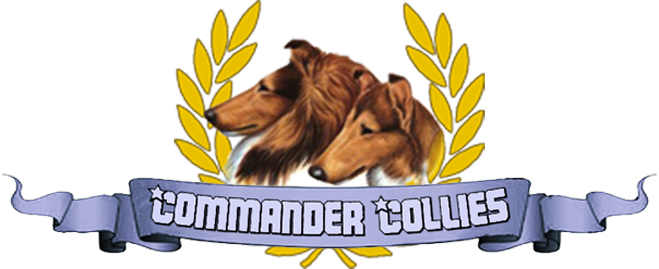 Commander Collies