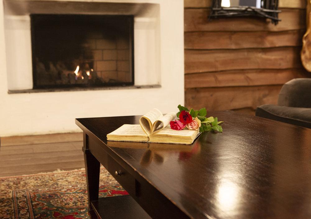 Slapp av med en bok foran peisen for å få varmen etter en fin skitur / tur