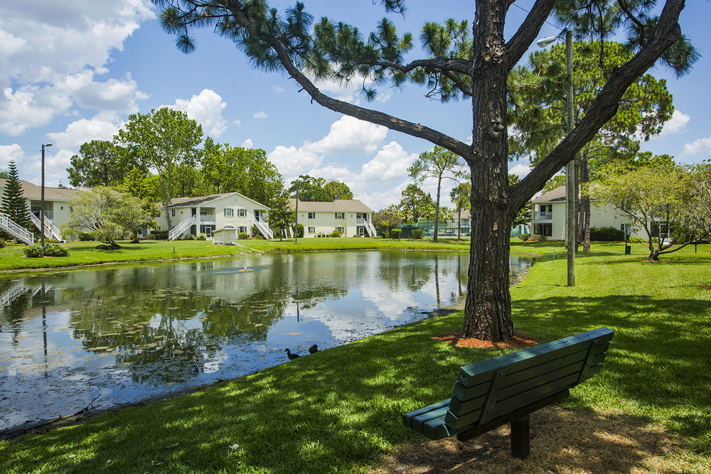 tampa-port_richey-apartment-one-bedroom-rental-two-exterior-pond.jpg