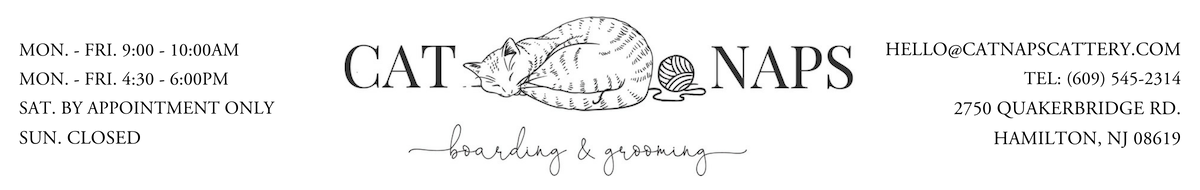 Cat Grooming & Boarding