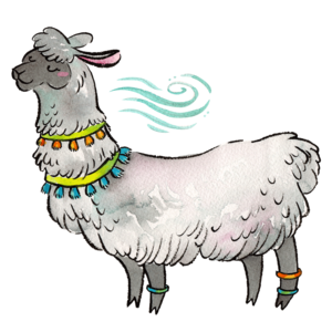 Carmen - The Clear Yourself Llama