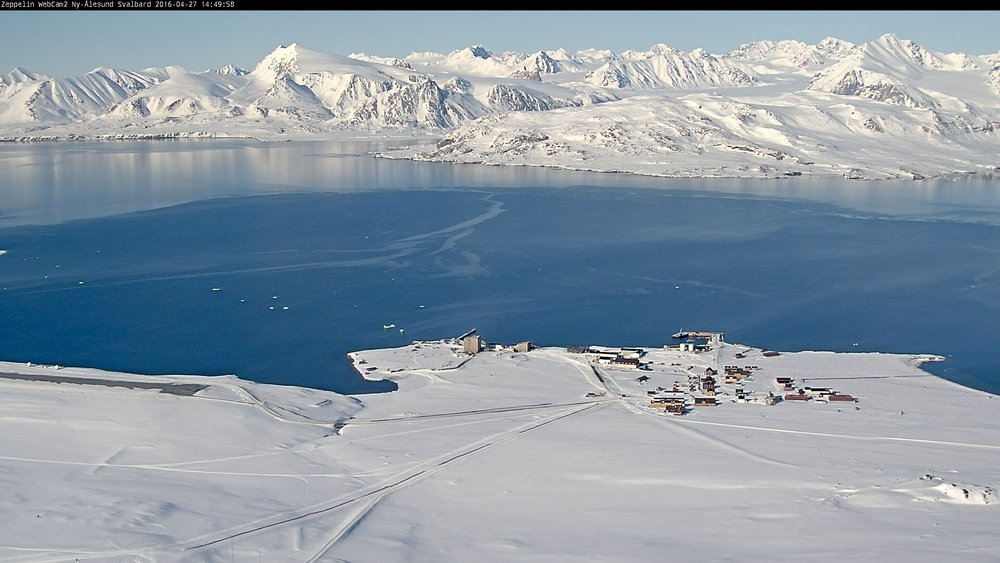 Live view of Ny-Ålesund, provided by the  Norwegian Polar Institute .