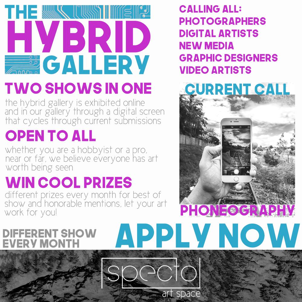 Hybrid Gallery.jpg