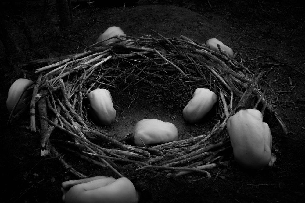 Mound Nest
