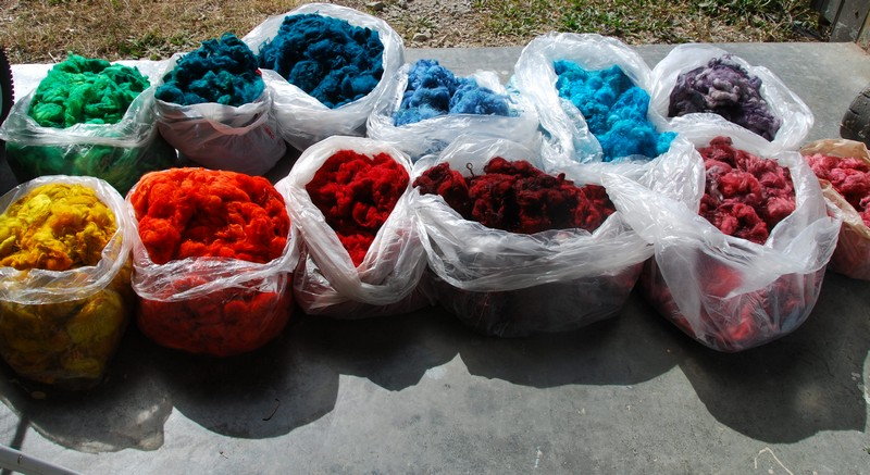 2010-10-10 - Bags of Icelandic wool Dyed ready for Roving.jpg