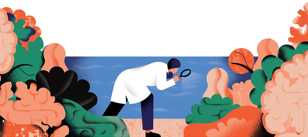 Image from The Economist Though Experiments Article.