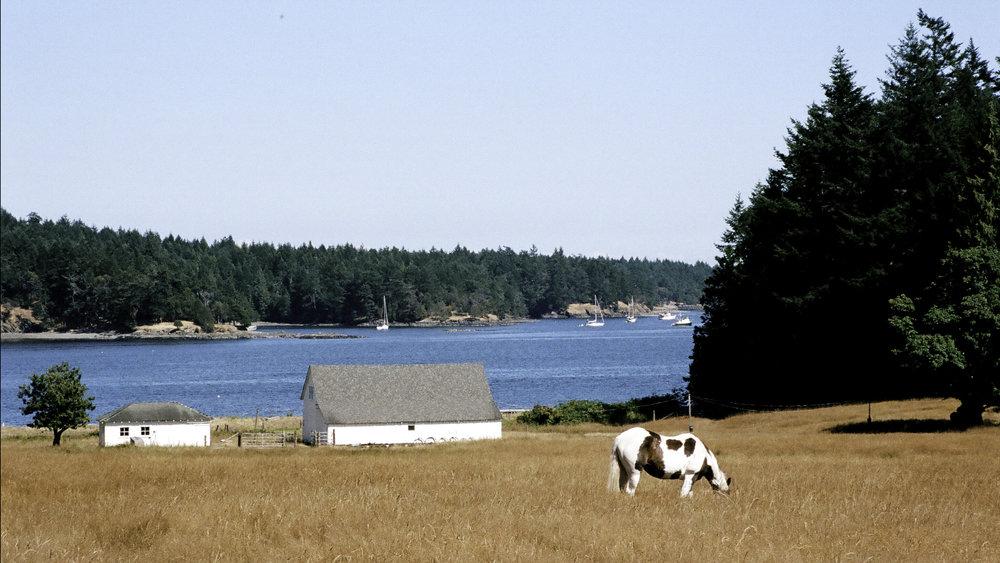 Prevost Harbor Farm.jpg