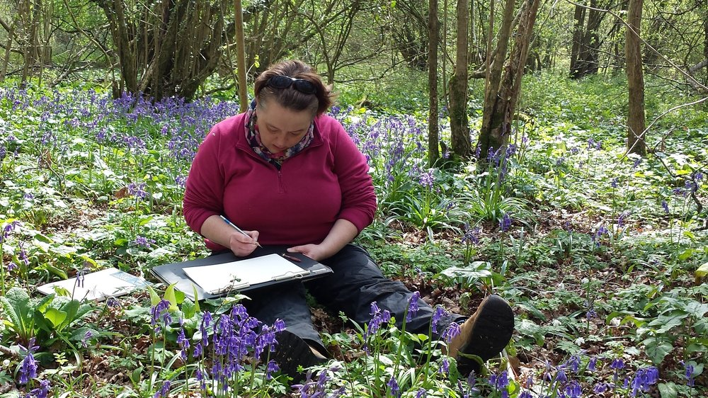 British botanical artist Sarah Morrish, studying native bluebells. Photo courtesy Sarah Morrish.