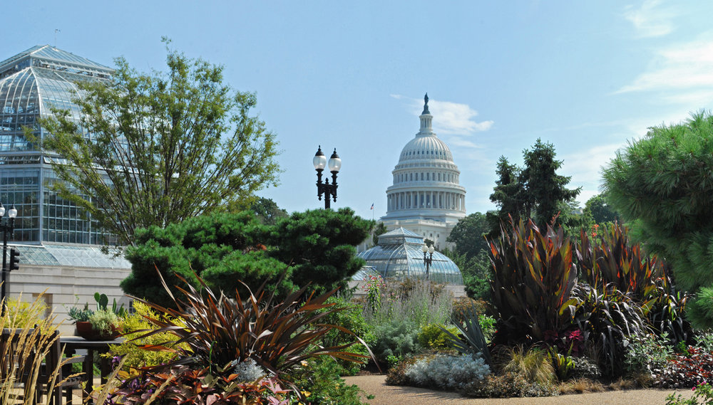 U.S. Botanic Garden Conservatory with view of the U.S. Capitol. Photo courtesy U.S. Botanic Garden