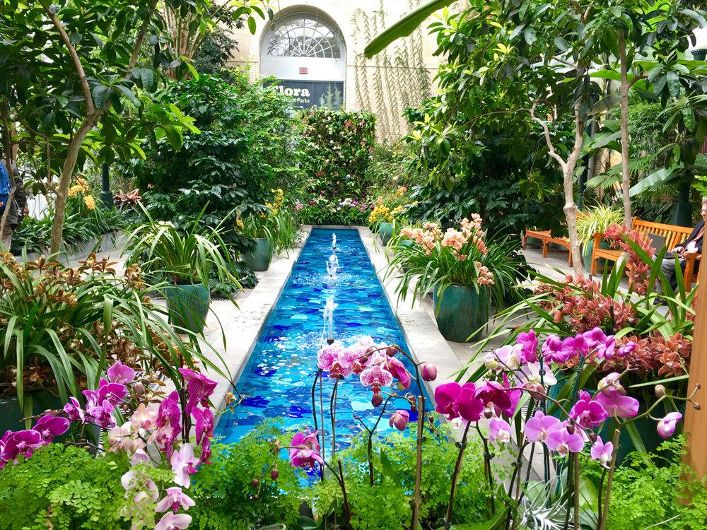 Conservatory Garden Gourt U.S. Botanic Garden. Photo courtesy U.S. Botanic Garden