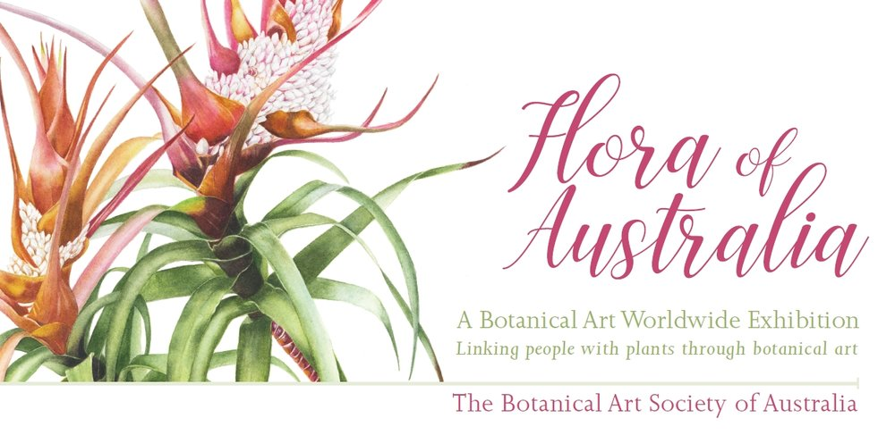 botanical art worldwide australia botanical art worldwide