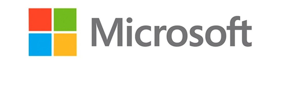 MICROSOFT - PETERSEN PARTNER
