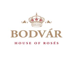 Bodvar+Logo.png